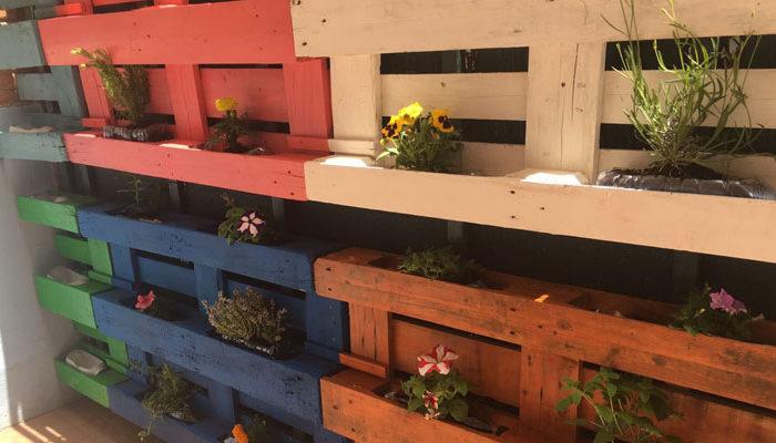 Jardín vertical de 1º de primaria del Colegio Rafaela María de Valladolid