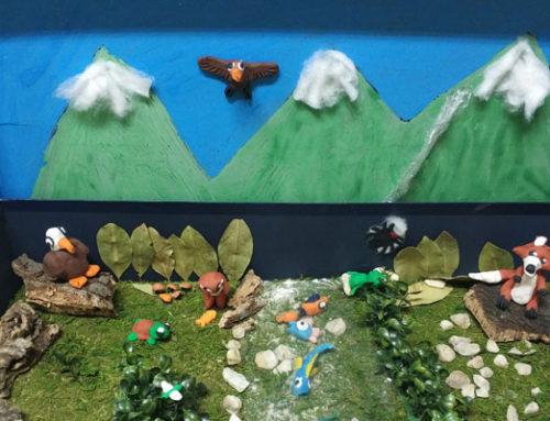 Proyecto sobre ecosistemas acuáticos en 5º de primaria