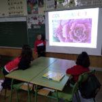 Los alumnos y alumnas de 1º de primaria del Colegio Rafaela María son expertos en plantas.