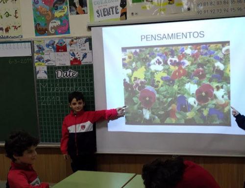 """Exposición del Proyecto """"Expertos en plantas"""""""