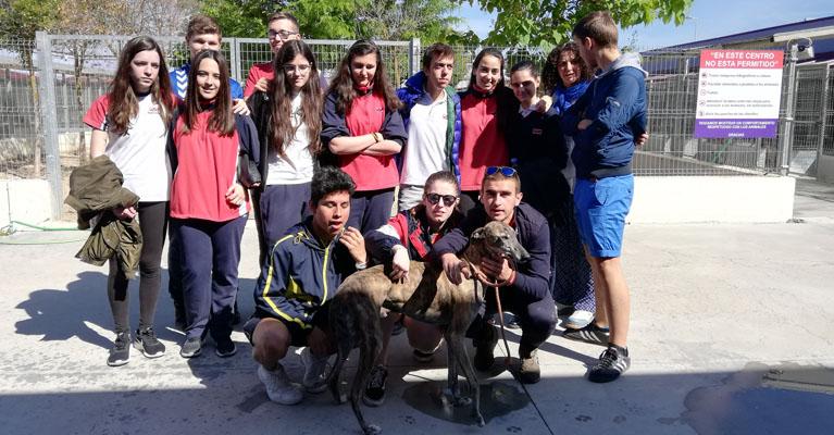 Visita al centro canino de los alumnos de 4º ESO del colegio concertado Rafaela María del centro de Valladolid