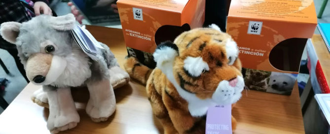 Los alumnos y alumnas de 5º de primaria del Colegio Rafaela María de Valladolid han adoptados a dos animales en peligro de extinción.